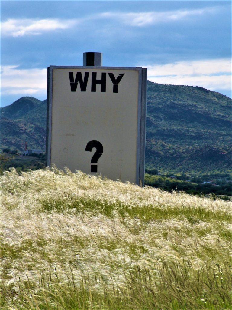 結局投資初心者や未経験者はどうすればいいの?