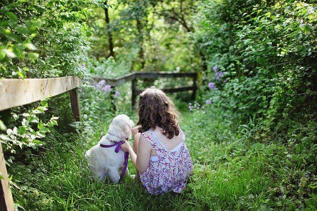 【脳科学】犬を飼うと幸せになる理由と3つの幸福タイプ